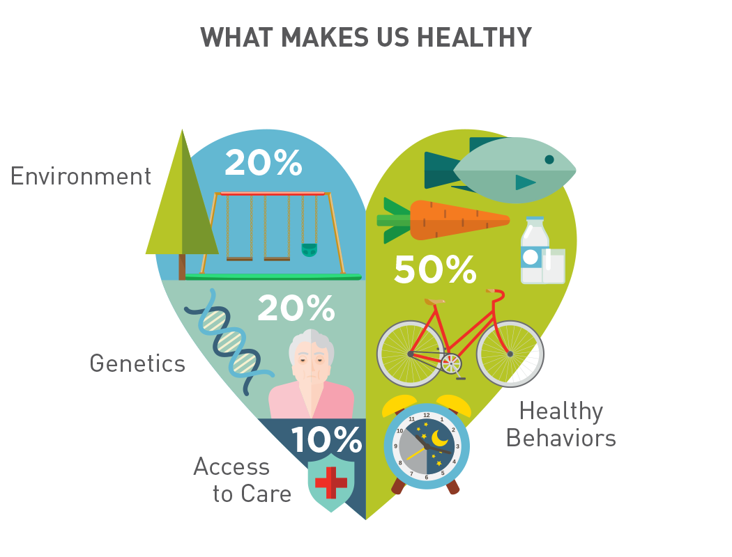 What makes us healthy